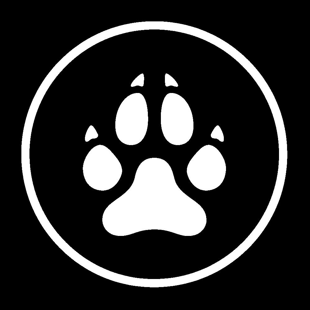 Tous nos produits sont testés et approuvés par nos propres chiens et chats pour vérifier leur intérêt
