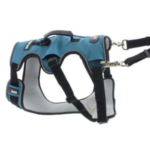 Harnais Confort I-Dog® bleu